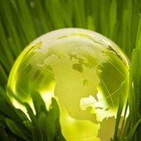 How to Go Green with Your Website