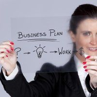 Which is the Best Option, a One-man Company or a Group Enterprise?